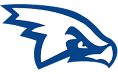 airforcehawks-logo